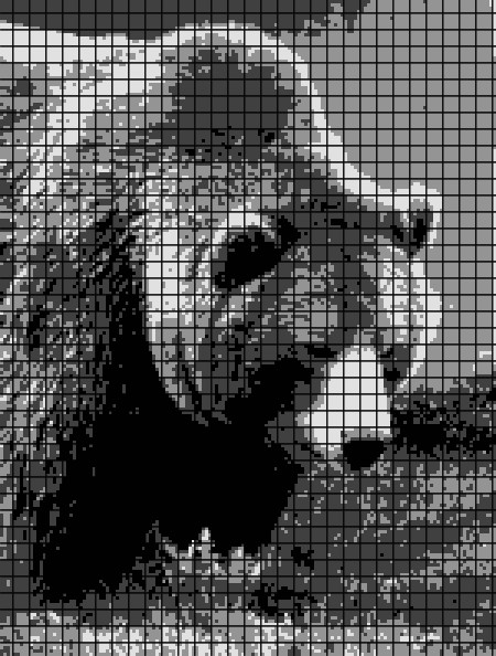 Bear (Chart/Graph AND Row-by-Row Written Instructions) – 02