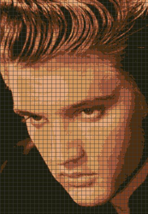 Elvis Tribute Blanket 1 C2C Graphghan Crochet Pattern